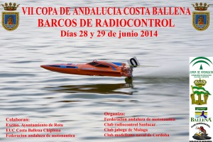 Cartel vii costa ballena copia copia